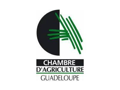 Guadeloupe chambre d agriculture victoire de la fdsea - Logo chambre d agriculture ...