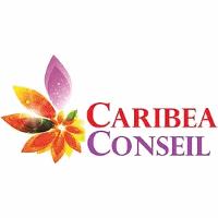 Logo Caribea Conseil