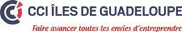 CCI DE REGION DES ILES DE GUADELOUPE